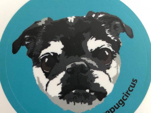 Art Paper Sticker review